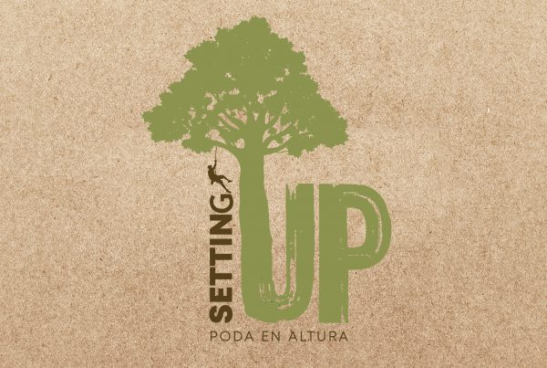 Diseño de Logotipo Setting up
